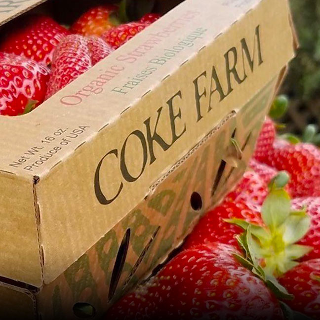 Organic Strawberries- Coke Farm - San Juan Bautista, California